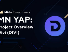 Divi Project Overview by Midas.Investments